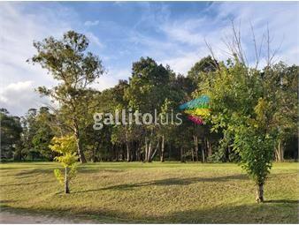 https://www.gallito.com.uy/terreno-venta-1300-barrio-privado-cumbres-de-carrasco-inmuebles-19149682