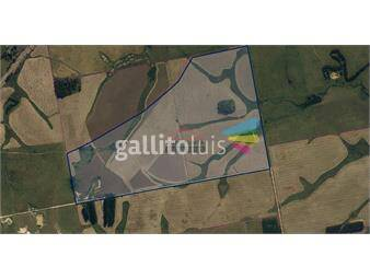 https://www.gallito.com.uy/campo-agricola-ganadero-inmuebles-19184700