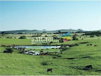 https://www.gallito.com.uy/campo-ganadero-en-cerro-largo-ref-5358-inmuebles-18499973