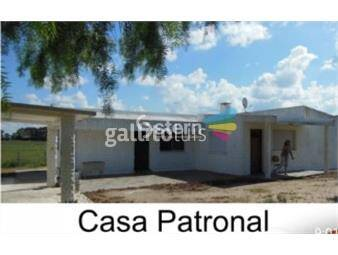 https://www.gallito.com.uy/venta-campo-en-puntas-de-maciel-florida-inmuebles-19174977