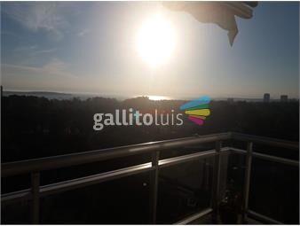 https://www.gallito.com.uy/apartamento-con-amenities-en-alquiler-anual-o-de-invierno-inmuebles-19233501