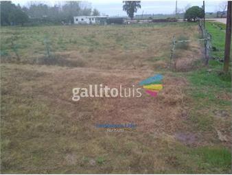 https://www.gallito.com.uy/oportunidad-excelente-precio-inmuebles-19254184