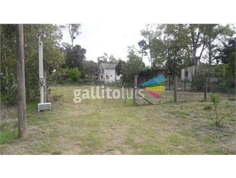 https://www.gallito.com.uy/terreno-en-venta-inmuebles-19258642