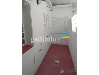 https://www.gallito.com.uy/apartamento-la-blanqueada-patio-exclusivo-gc-2500-inmuebles-19260559