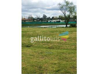 https://www.gallito.com.uy/terreno-con-la-mejor-vista-al-lago-inmuebles-16276560