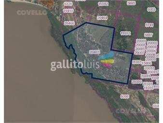https://www.gallito.com.uy/excelente-campo-con-costa-al-rio-de-la-plata-inmuebles-19279593