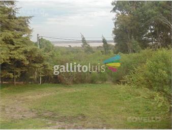 https://www.gallito.com.uy/terreno-nueva-palmira-inmuebles-19280136