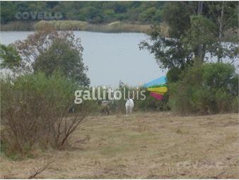 https://www.gallito.com.uy/terreno-nueva-palmira-inmuebles-19280139