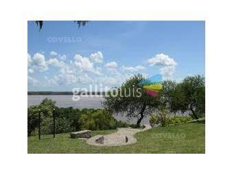 https://www.gallito.com.uy/terreno-nueva-palmira-inmuebles-19280140