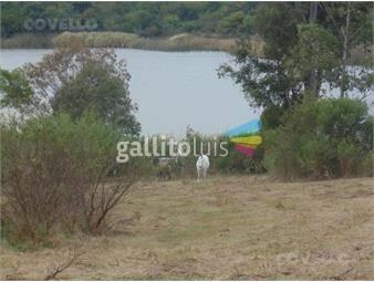 https://www.gallito.com.uy/terreno-nueva-palmira-inmuebles-19280142