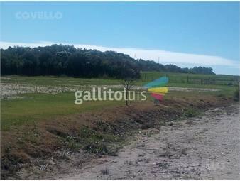 https://www.gallito.com.uy/terreno-colonia-del-sacramento-inmuebles-19280247