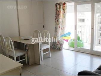 https://www.gallito.com.uy/alquiler-peninsula-inmuebles-19282524