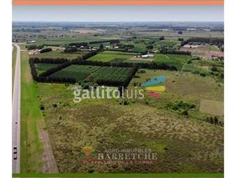 https://www.gallito.com.uy/terreno-en-venta-inmuebles-19284852