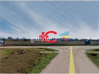 https://www.gallito.com.uy/terreno-en-alquiler-canelones-ref-6582-inmuebles-18499868