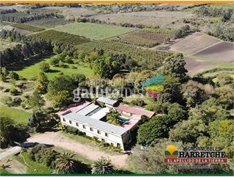 https://www.gallito.com.uy/quinta-en-venta-inmuebles-19033165