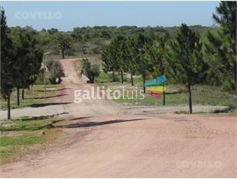 https://www.gallito.com.uy/terreno-carmelo-barrio-cerrado-puerto-deportivo-playa-inmuebles-19281894