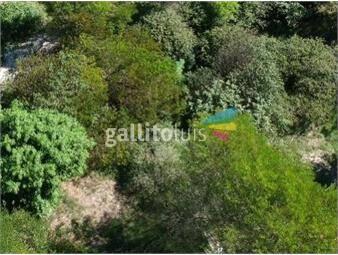 https://www.gallito.com.uy/terreno-en-remanso-de-neptunia-sur-629-mts2-cerca-del-m-inmuebles-19297002
