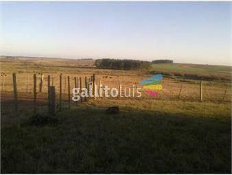 https://www.gallito.com.uy/campo-agricola-ganadero-en-rocha-ref-4030-inmuebles-18499993