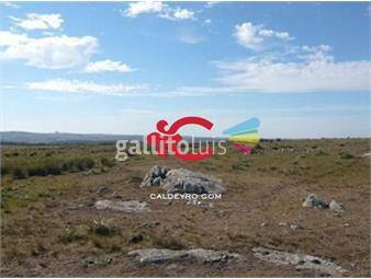 https://www.gallito.com.uy/campo-ideal-forestal-en-lavalleja-ref-381-inmuebles-18499928
