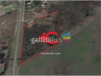 https://www.gallito.com.uy/terreno-apto-para-logistica-ref-2424-inmuebles-18499838