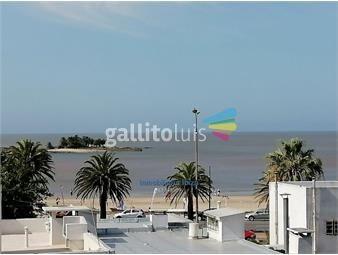https://www.gallito.com.uy/malvin-venta-apartamento-1-dormitorio-a-estrenar-usd-145000-inmuebles-18525105
