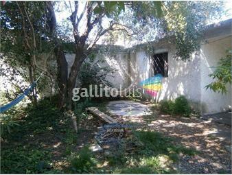 https://www.gallito.com.uy/casa-parque-batlle-inmuebles-19302560