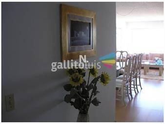 https://www.gallito.com.uy/apartamento-en-primera-linea-inmuebles-19317295