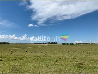 https://www.gallito.com.uy/campo-agricola-en-rio-negro-ref-4568-inmuebles-18488572