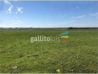 https://www.gallito.com.uy/campo-en-venta-en-san-jose-ref-7382-inmuebles-18488584