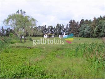 https://www.gallito.com.uy/chacra-en-zona-de-barrios-privados-ref-7471-inmuebles-18488609