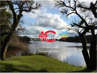 https://www.gallito.com.uy/campo-con-costa-al-rio-de-la-plata-ref-260-inmuebles-18499659