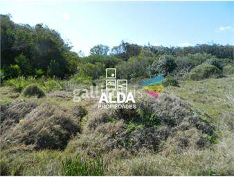 https://www.gallito.com.uy/terreno-en-bella-vista-inmuebles-15991167