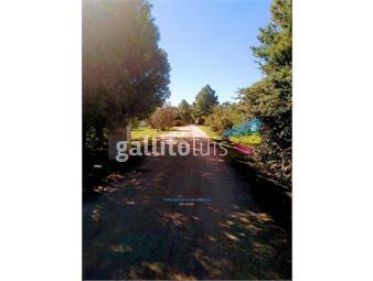 https://www.gallito.com.uy/terreno-de-5000-m2-en-barrio-privado-villa-juana-inmuebles-14213001
