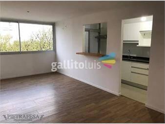 https://www.gallito.com.uy/apartamento-en-alquiler-2-dormitorios-1-baã±o-salto-palermo-inmuebles-19294078
