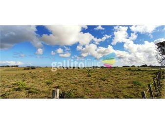 https://www.gallito.com.uy/ideal-para-una-casa-de-campo-inmuebles-19361450
