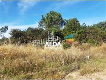 https://www.gallito.com.uy/terreno-en-punta-colorada-inmuebles-14795148