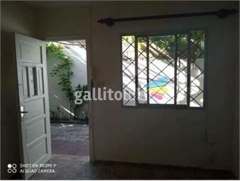 https://www.gallito.com.uy/alquiler-apartamento-coronel-raiz-sayago-inmuebles-19379512
