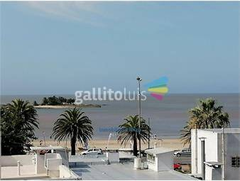 https://www.gallito.com.uy/malvin-venta-apartamento-con-renta-2-dormitorios-a-estrenar-inmuebles-18525319