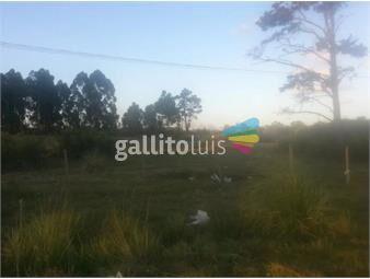 https://www.gallito.com.uy/gran-terreno-en-camino-de-las-higueritas-si-banco-inmuebles-16871161