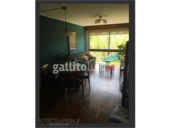 https://www.gallito.com.uy/apartamento-en-alquiler-2-dormitorios-1-baã±o-jsalterain-p-inmuebles-19406422