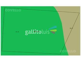 https://www.gallito.com.uy/campo-a-10-km-de-nueva-palmira-sobre-ruta-inmuebles-19396965