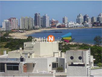 https://www.gallito.com.uy/apartamento-en-alquiler-mansa-punta-del-este-1-dormitori-inmuebles-19416610