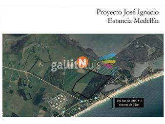 https://www.gallito.com.uy/tierras-medellin-jose-ignacio-inmuebles-19417292