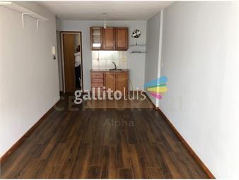 https://www.gallito.com.uy/hermoso-monoambiente-en-pocitos-inmuebles-19404331