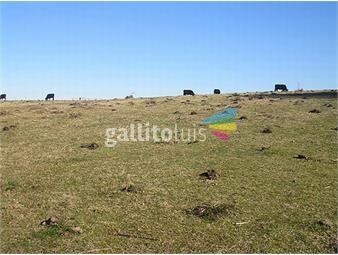 https://www.gallito.com.uy/estancia-en-treinta-y-tres-ref-332-inmuebles-19378168