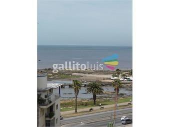 https://www.gallito.com.uy/proximo-rambla-y-villa-biarritz-inmuebles-19433356