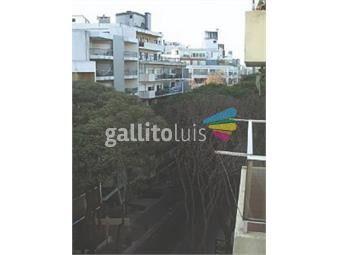 https://www.gallito.com.uy/ellauri-proximo-21-inmuebles-19433405