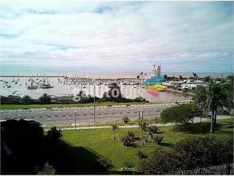 https://www.gallito.com.uy/puerto-del-buceo-inmuebles-19433469