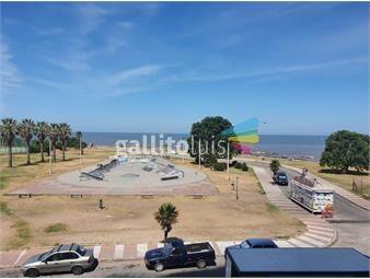 https://www.gallito.com.uy/forum-3-dormitorios-con-vista-al-mar-y-puerto-buceo-inmuebles-19433622