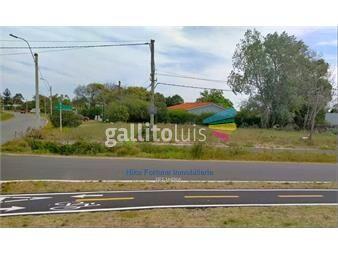 https://www.gallito.com.uy/excelente-terreno-sobre-calle-asfaltada-inmuebles-18136452